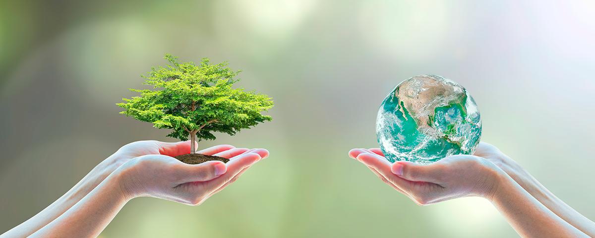 economia-e-sustentabilidade-motivos-para-voce-instalar-paineis-solares-na-sua-residencia