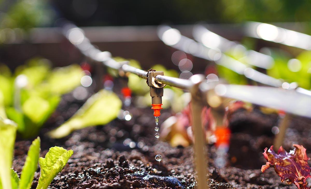 Como deixar o seu agronegócio mais sustentável?