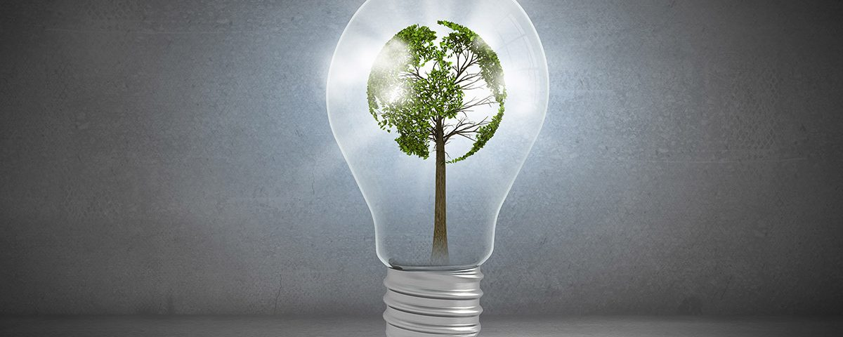 energia-renovavel-5-razoes-para-comeca